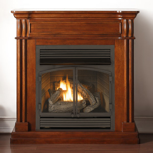Enjoyable Best Gas Fireplace Inserts Reviews Ultimate Buyers Guide Download Free Architecture Designs Jebrpmadebymaigaardcom