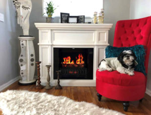 Pleasing Best Electric Fireplaces Reviews Of More Realistic Models 2019 Download Free Architecture Designs Terchretrmadebymaigaardcom