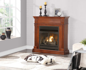 Gas Fireplace Insert Reviews