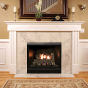 Best Gas Fireplace Inserts Reviews Ultimate Buyer S Guide 2019