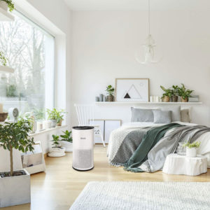 How Does Air Purifiers for Mold work