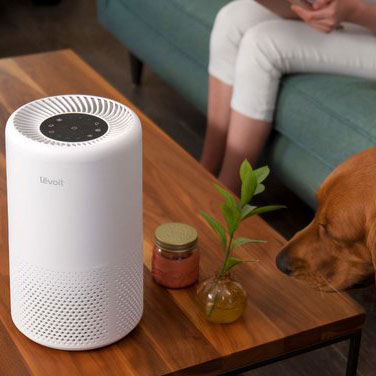 How Does Air Purifiers for Pets work